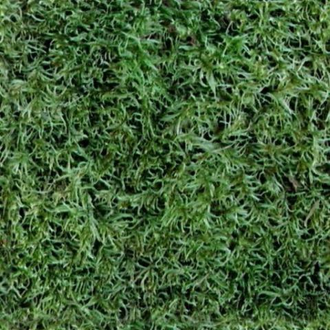 Grass Sketchup Textures | Sketchuptut | unofficial resource site for